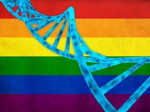 Homosexualitatea nu se gaseste intr-o gena din ADN, releva un studiu