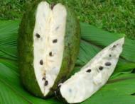 Fructul care ar putea revolutiona tratamentul cancerului