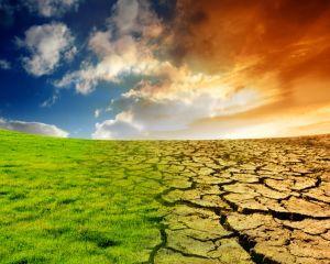 Ce efecte au schimbarile climatice asupra sanatatii noastre