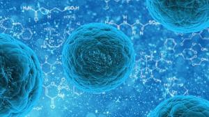 Toxoplasmoza in sarcina. Stii la ce riscuri te supui daca te-ai infectat?