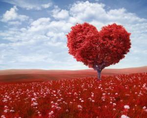 20 de fete ale iubirii