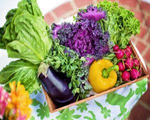 Tratamente si remedii naturale pentru gastrita