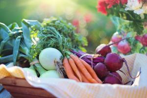 Alimentatia, aliat pentru un sistem imunitar eficient pe timpul iernii