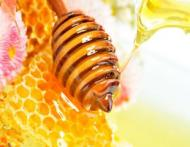Diverse tipuri de miere si proprietatile lor specifice