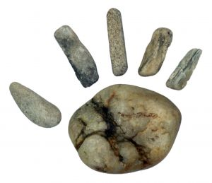 Paine preistorica