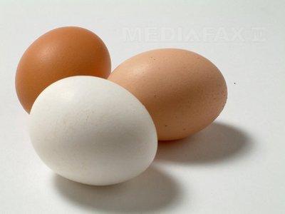 Cum iti dai seama daca ouale sunt proaspete?