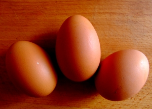 Dieta Mayo. Beneficii si Riscuri