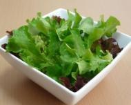 Salata cu leurda si castraveti