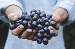 Top motive sa mananci mai multe legume si fructe anul acesta!