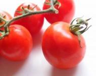 Reteta pentru vegetarieni: Supa de rosii cu busuioc