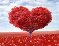 Nu trebuie sa fii singura sa urasti Valentine's Day