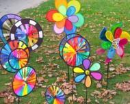 Evenimente de Ziua Copilului in Bucuresti